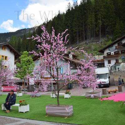 Giro 2017  stage 17 by V (43)