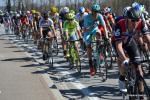 Ronde van Vlaanderen 2016 by Valérie Herbin (50)