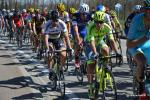 Ronde van Vlaanderen 2016 by Valérie Herbin (51)