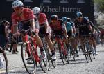 Ronde van Vlaanderen 2017 by Valérie Herbin (31)