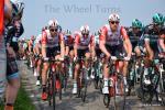 Ronde van Vlaanderen 2019 by V.Herbin (12)