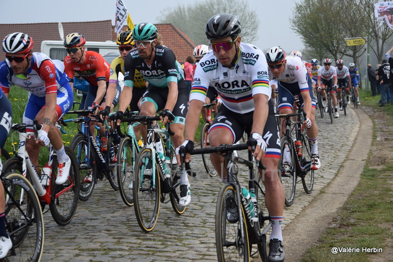 Ronde van Vlaanderen 2019 by V.Herbin (8)